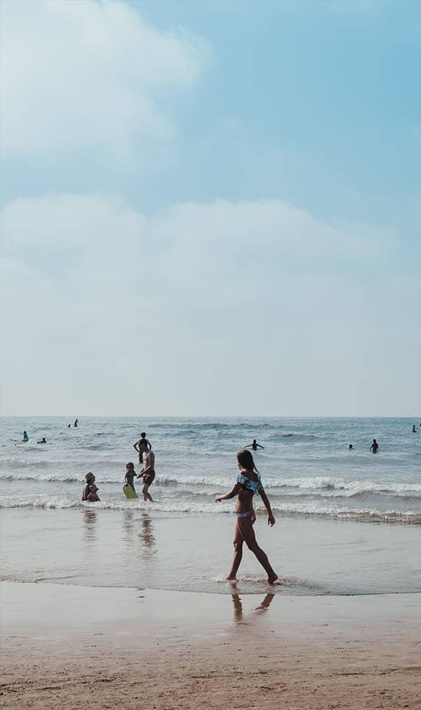Jak przeciwdziałać zmianom klimatu? | Ekologia i ochrona środowiska | Eutrofizacja Bałtyku | Zamieranie Morza Bałtyckiego