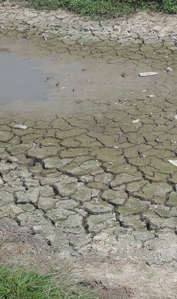 Ochrona środowiska a zmiany klimatu | Klęski żywiołowe: susze, deszcze nawalne, huragany, powodzie, podwyższenie poziomu morza